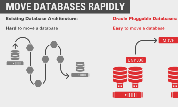 Infographic: Oracle: Pluggable databases