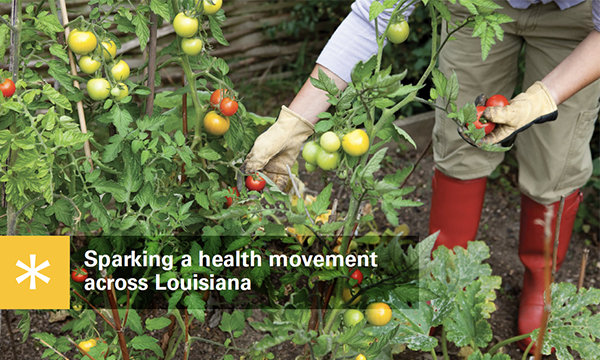 Publication: Blue Cross and Blue Shield of Louisiana – Health movement report