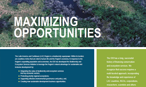 Marketing: IDB – Biodiversity and ecosystem services flyer